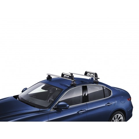 Ski carrier for 3 couples of ski or 2 snowboards