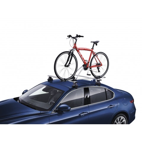 Standard steel bike carrier
